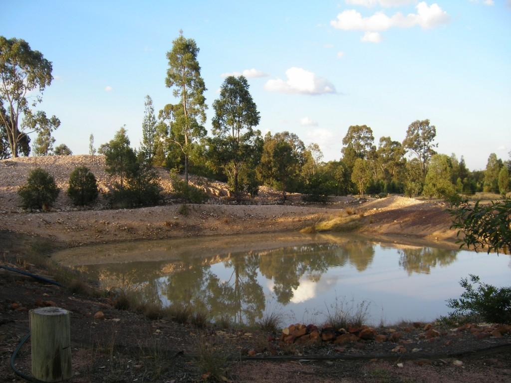 The house dam