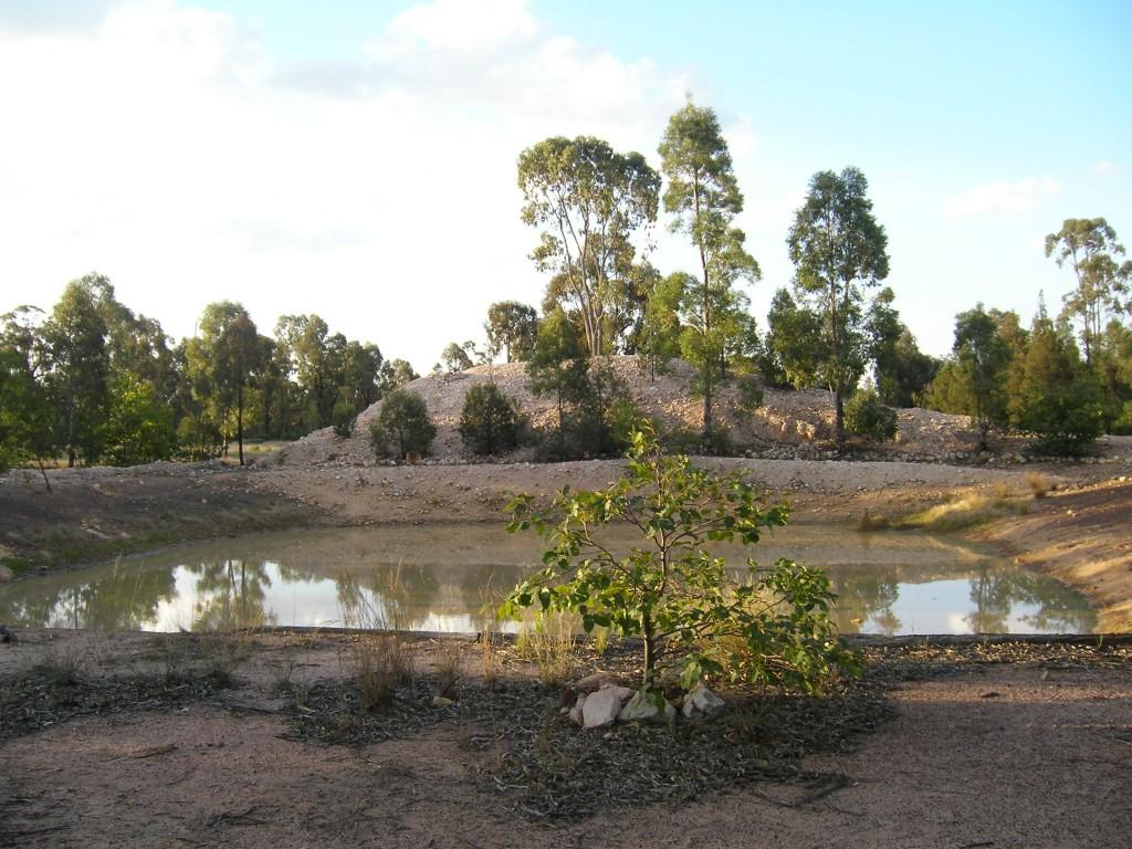 The dam at Tara